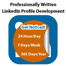 Professional Level – LinkedIn Profile Development
